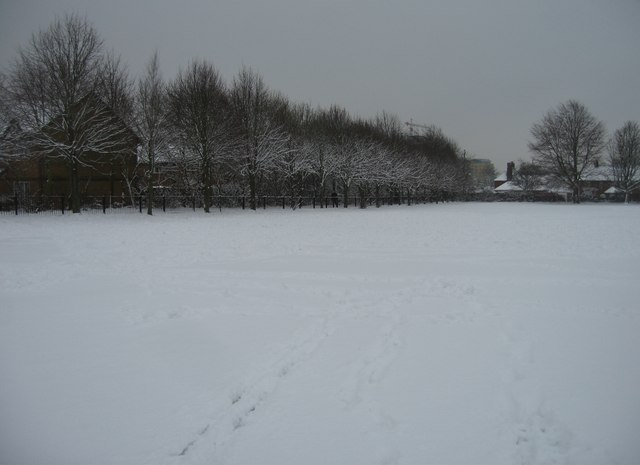 Vyne School playing fields