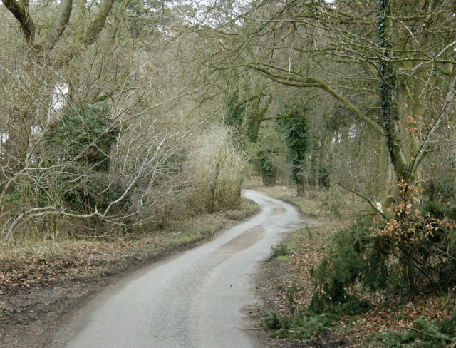2009 : Quiet lane near Pitter's Farm