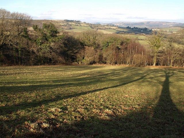 Scae Wood  (2)