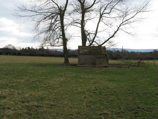 Derelict cattle shelter