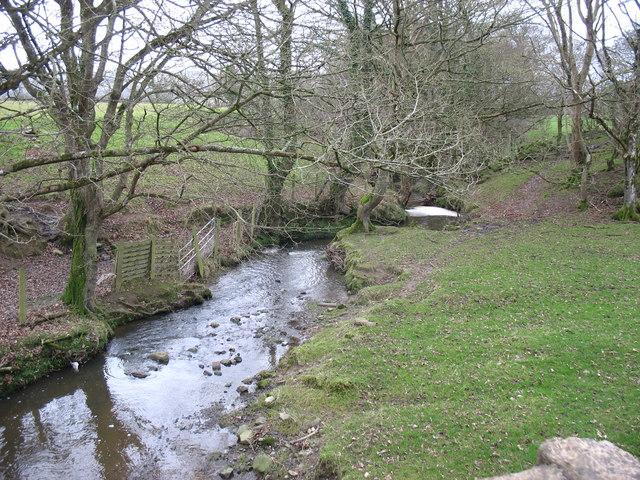 Stream below Pont y Deri