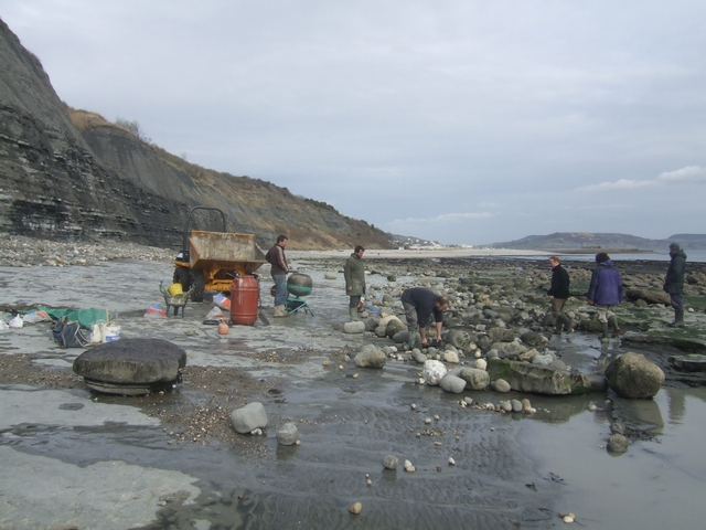Men at work on the beach west of Lyme Regis