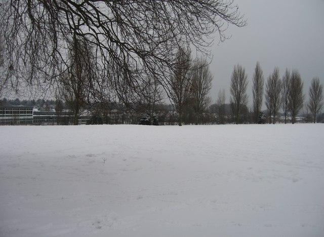 Whiteditch playing fields are white today!