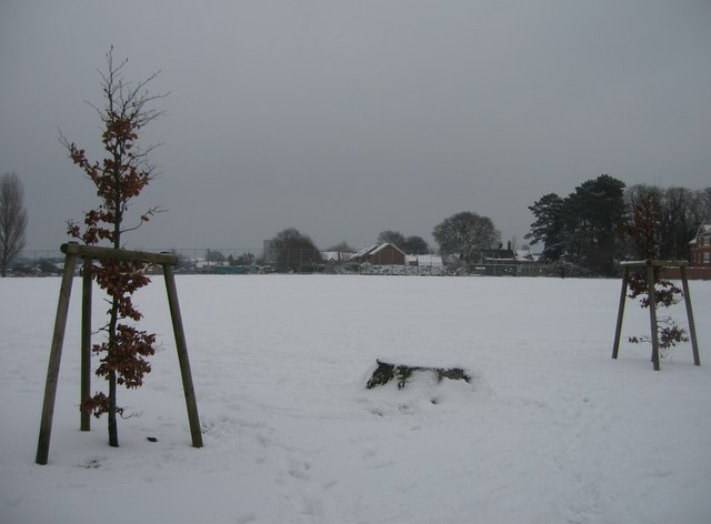 White, Whiteditch playing fields