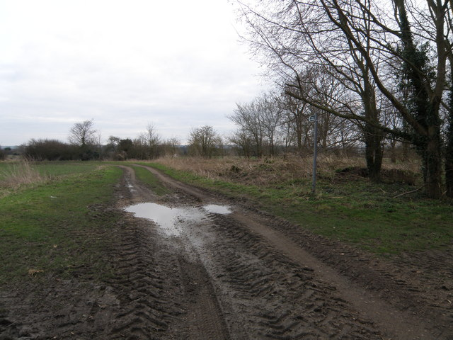Track and Footpath towards Hardwick