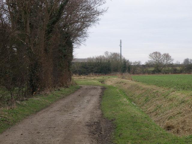 Looking towards Paddock Farm