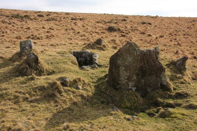 Cist on Harford Moor