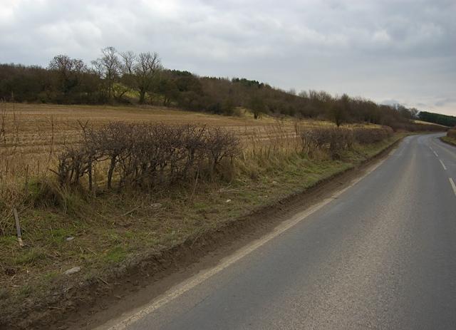 Cliffe Road, near Hotham