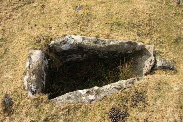Cist on Harford Moor
