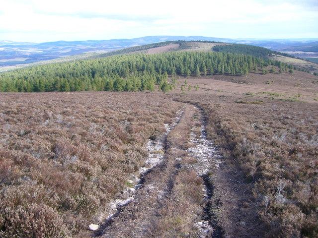 Track on NorthWest slopes of Carn Ferg