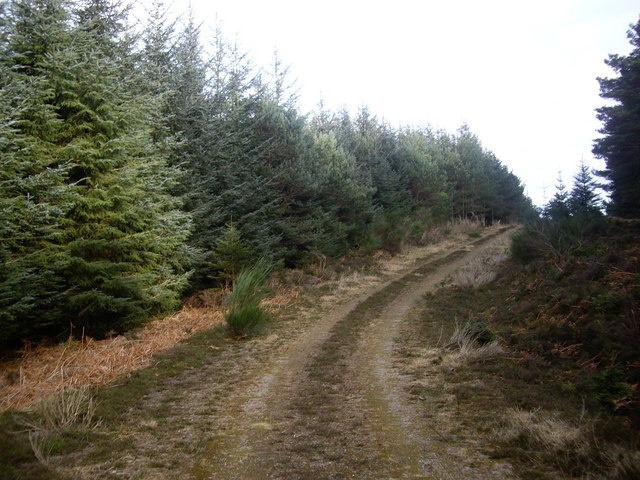 Track westwards up Hill of Trustach