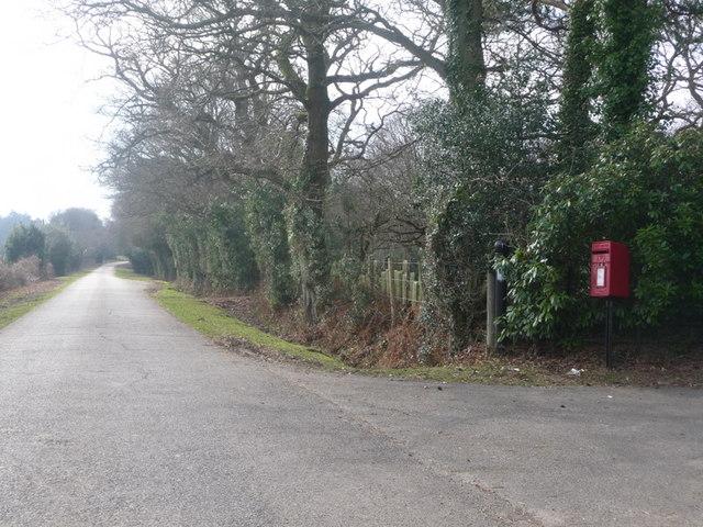 Thorney Hill: postbox № BH23 1, Black Lane