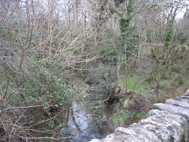 The stream above Pont y Deri bridge