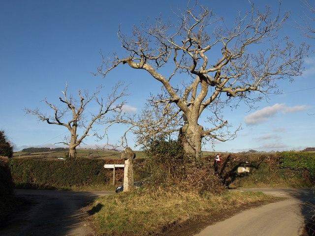 Hawson Cross