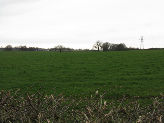 Countryside at Tabley Hill
