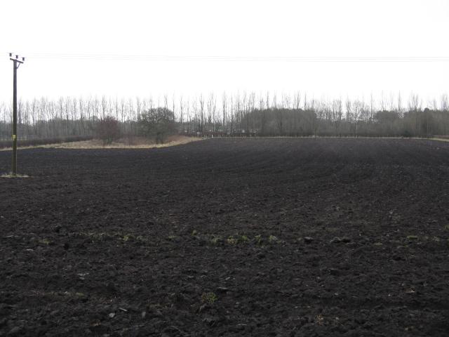Fields Opposite Roebuck Farm, Knutsford