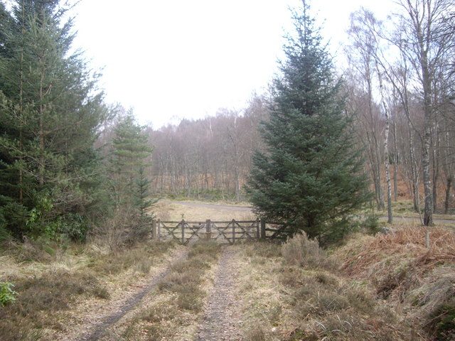 Gated exit from track over Hill of Trustach