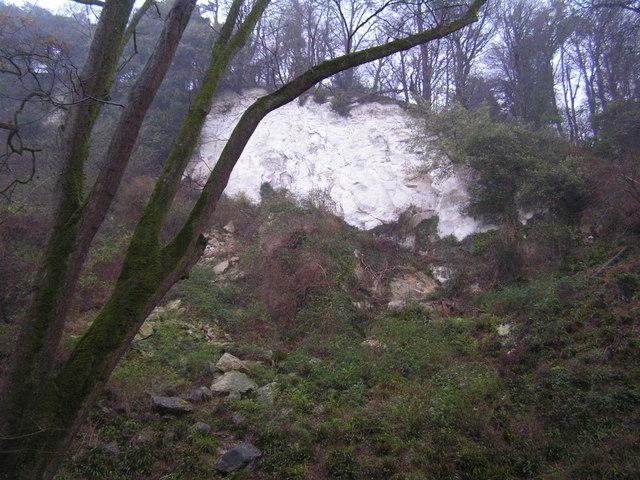 Chalk Cliff, Undercliff