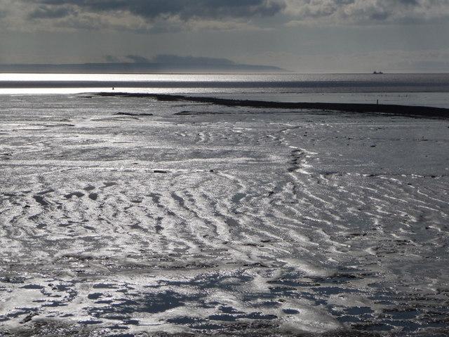 St. Brides Wentlooge: mudflats