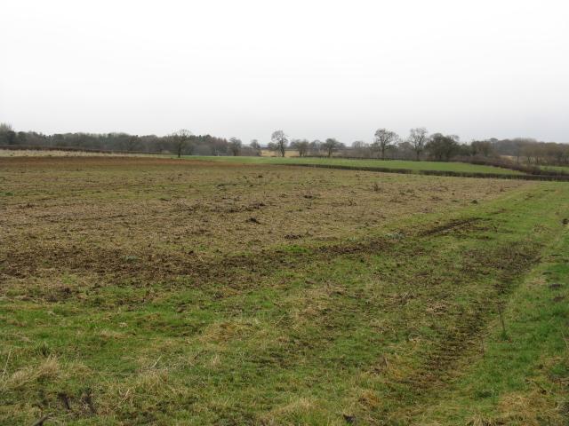 Fields Off Mereside Road, Bucklow Hill