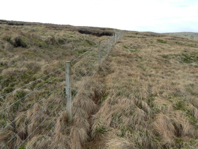 Fence on Bald Hill