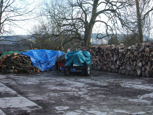 Tractor and woodpile