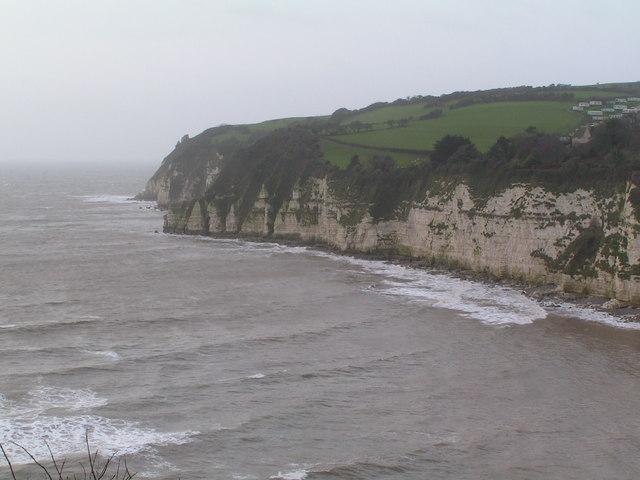 Chalk Cliffs West of Beer