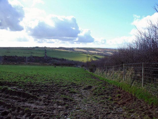 Pasture near Ddol-wen, East Cilrhedyn