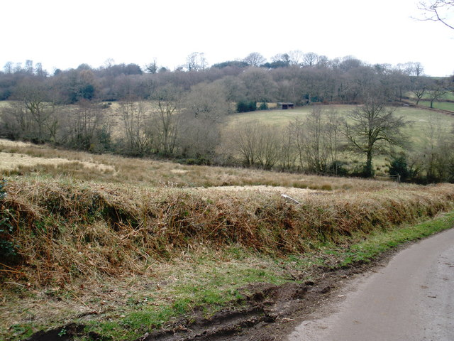 Countryside, near Higher Luxton