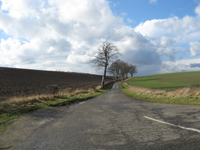 Single track road near Crombie