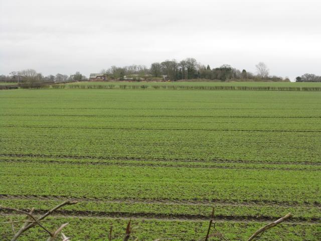 Bollin Valley Fields