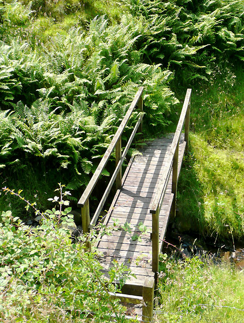 Footbridge across Nant Cou, near Tregaron, Ceredigion