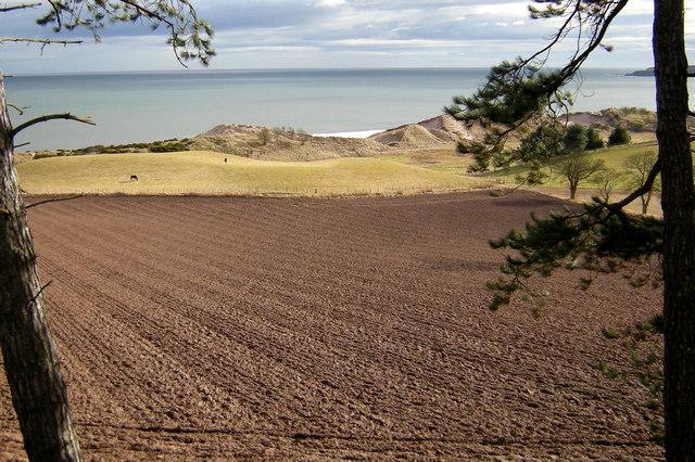 Serene view of land, dunes and sea at Lunan Bay