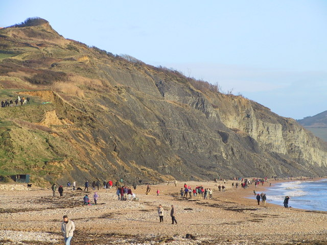 Beach at Charmouth