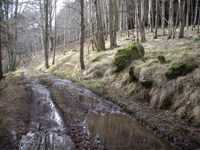 A sodden piece of riverside track