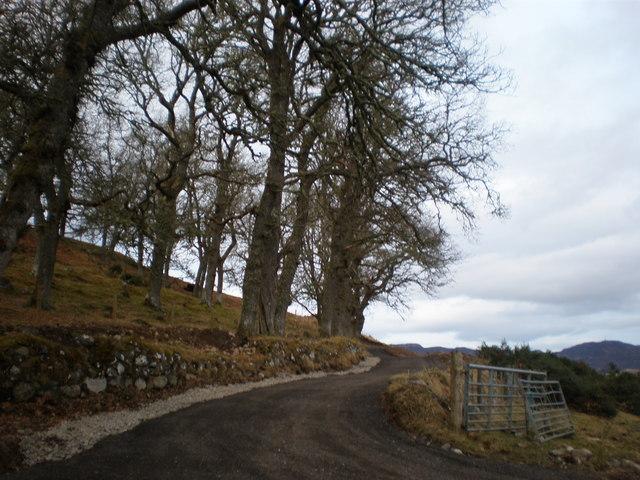 Restored Driveway going to Balnaglaick