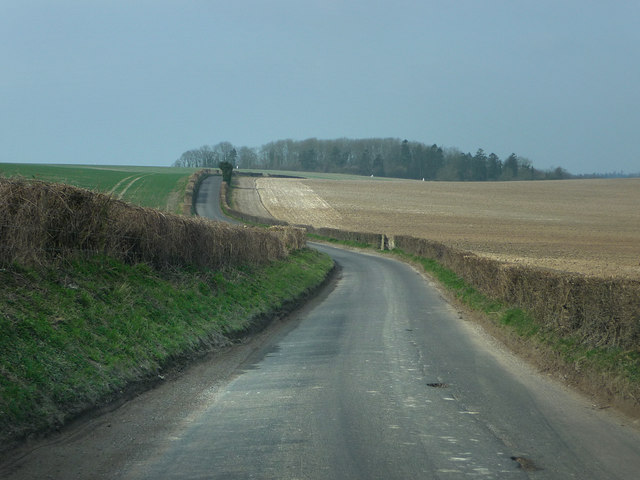 Lane to West Grimstead