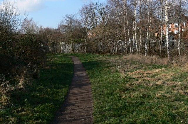 Footpath to Knighton Lane East