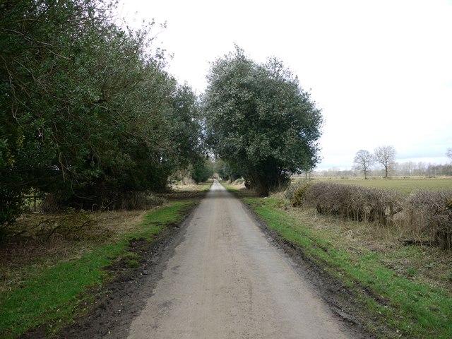 Road near Jingling Gate, Matfen