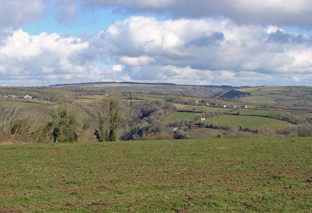 Pasture near Blaencynllaith, Cynwyl Elfed