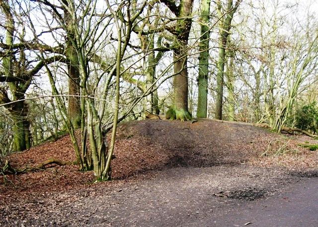 Bronze Age Barrow, Moneybury Hill