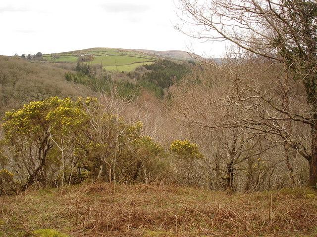 View across the Webburn Valley