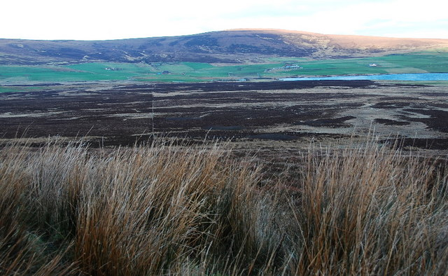 Moorland near Loch of Kirbister