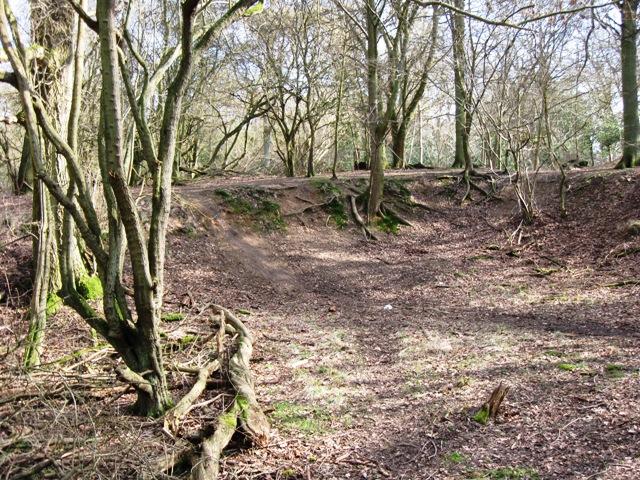 Old Chalk Pit on Moneybury Hill