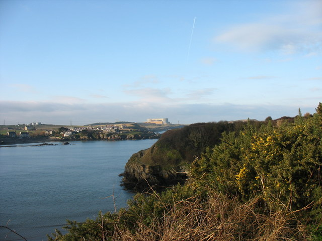 Gorse covered cliff-top above Traeth Mawr