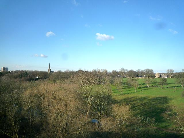 Churchfields Recreation Ground from the Wharncliffe Viaduct