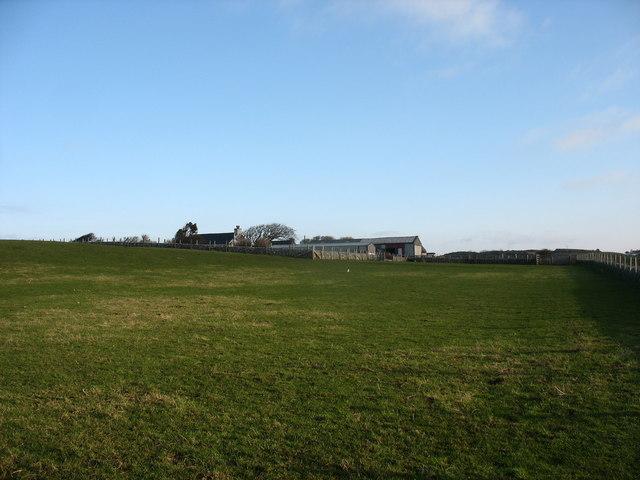 View across grazing land to Penrhyn-mawr Farm