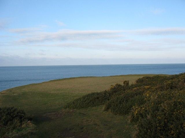 Grazing land at Trwyn y Parc
