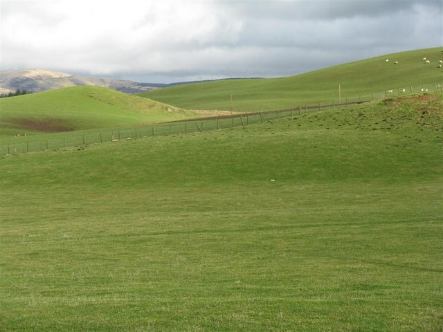 Pastures near Cringletie