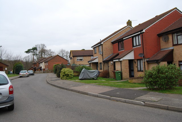 Blackthorn Avenue